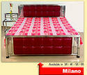 Stainless Steel Queen Bed (SS Milano)