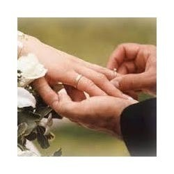 pre matrimonial verification service