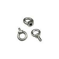 Stainless Steel Eye Bolt