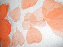 Skeleton Leaves In Custom Colors Fors Scrapbooking
