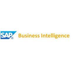 sap business intelligence services