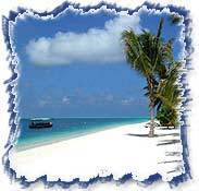 Coconuts & Beaches Tour