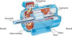 squirrel cage induction motors