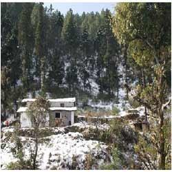 Nature View Cottages in Bhowali-Nainital
