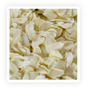 Freeze Dried Garlic