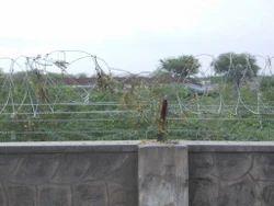 Galvanized Concertina Coiled Wire