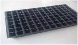 104 Cavities Root Trainer Seedling Nursery Tray