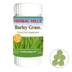 Barley Grass