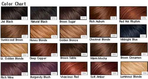 Color Chart Remy Hair Trader From Bengaluru