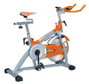 cruz fitness spine bike