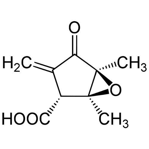 Methylenomycin A