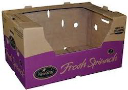 Custom Corrugated Packaging Boxes