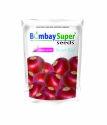 sweet red onion seeds