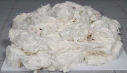 Raw Waste Cotton