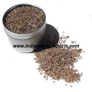Europe Quality Cumin Seeds