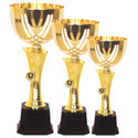 Sports Cup In Three Sizes
