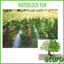Waterlock 93n:Polymer for Agriculture Application