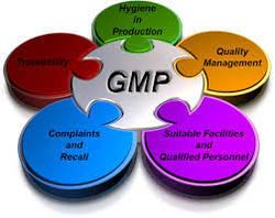 Food Safety For Food Industries Gmp Certification
