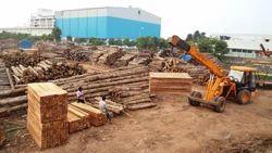 Teak Wood Logs-Timber Wooden