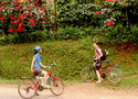 Cycling in Madikeri
