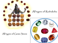 All Types of Rudraksha & Gems Stone