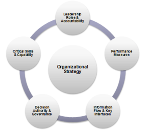 organization development consultant plan for the Carrie foster woman of many businesses organisation development expert, facilitator, coach, mentor, lecturer, freelance writer, author, speaker.