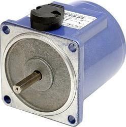 15 Watt Reversible Motors