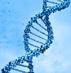 Molecular Biology?