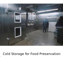 Cold Storage for Food Preservation