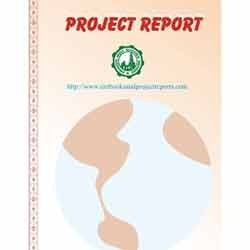 Project Report of Export Oriented Industries