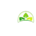 Metro Frozen Fruits & Vegetables Private Limited