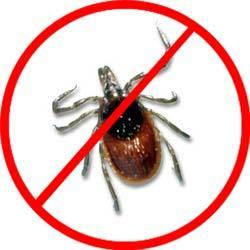 Deer Tick Control Services