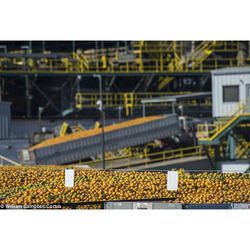 Agriculture Product Cold Storage