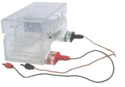 Electrophorosis Apparatus Horizontal Tank
