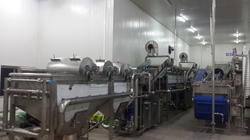 Leafy Vegetable Processing Machinery