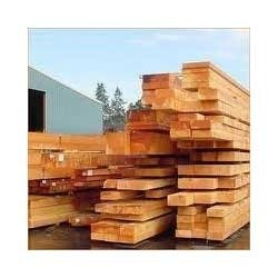 sal wood timber