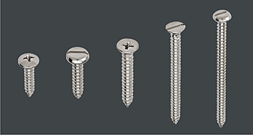 S.S. Self Tapping Screw