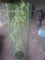 Fiber Tree Guard