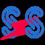 Ss Enterprises Electricals