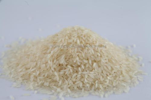 PR 106 Non Basmati Rice