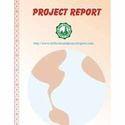 Acetylene Black Project Report