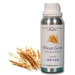 wheat germ oil triticum aestivum