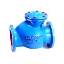 Reflux Non Return Valve