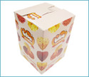 Card Board Boxes (04)