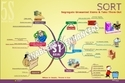 Posters on - 5S Mind Maps