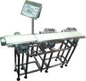 dynamic check weighing system