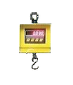 hanging scale