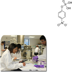 Para Nitrophenylphosphate for Laboratory