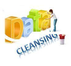 data scrubbing service