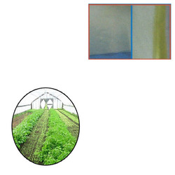 Poly Film for Green House